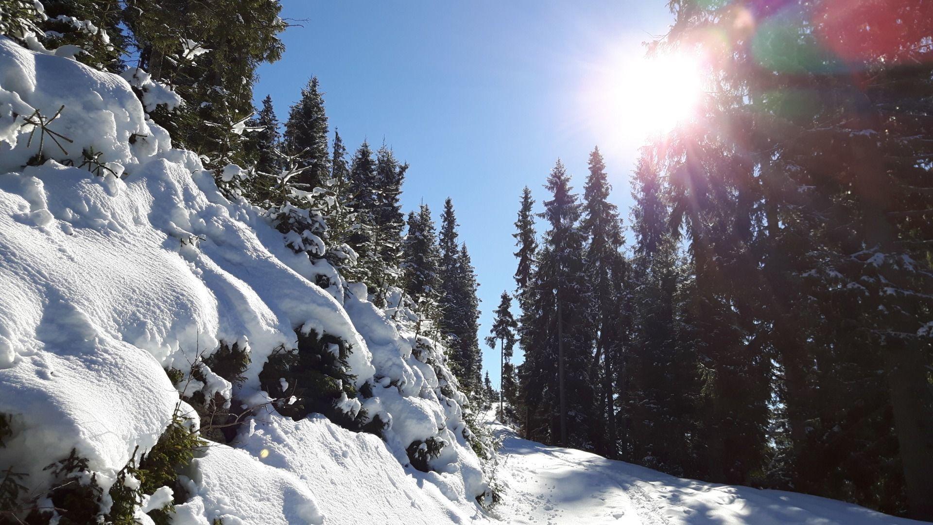 Ellmau_Biedringer Platte_Winterwanderung_Wilder Kaiser