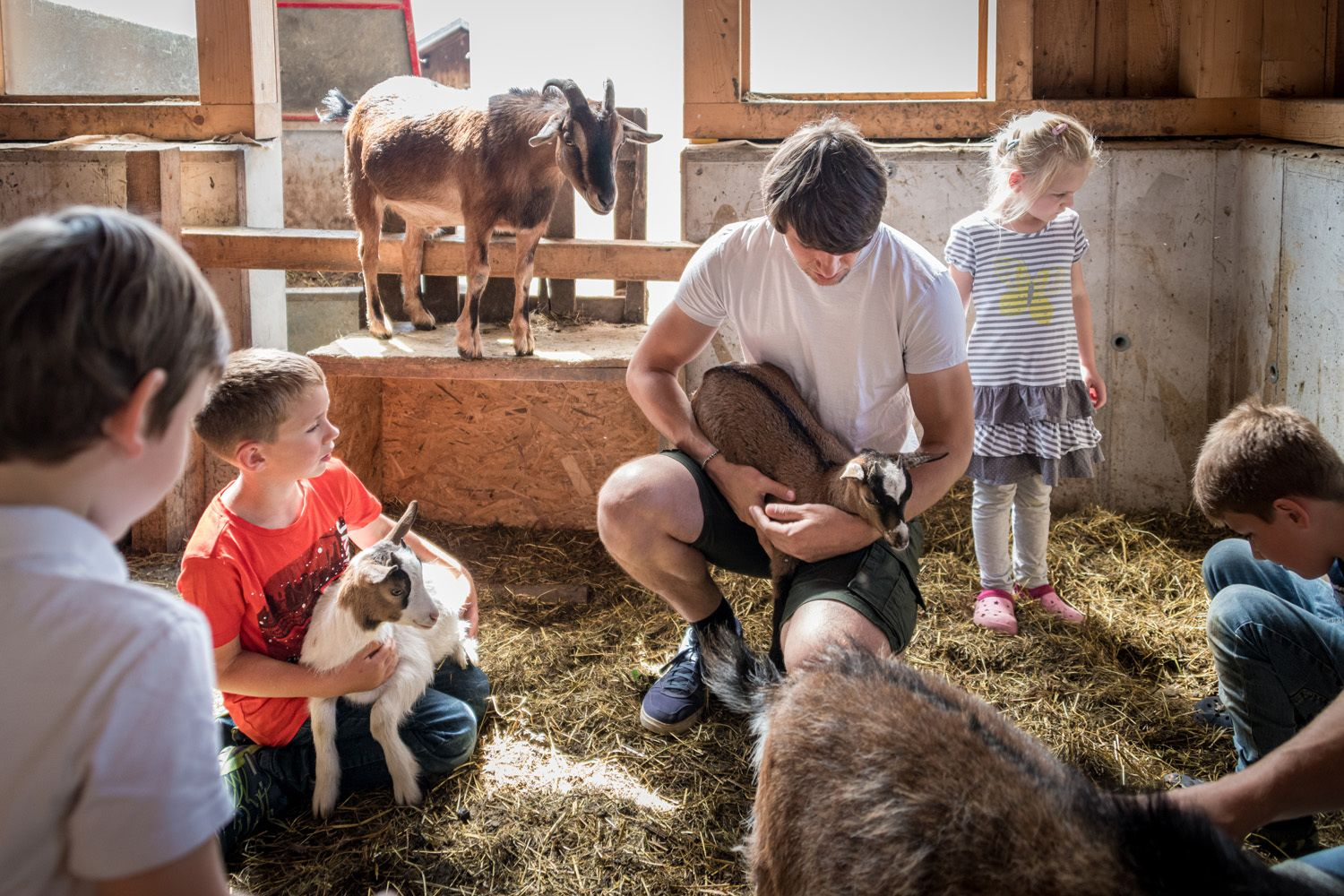 FRIDAY: with the alpacas and the llama Konrad at the Umlberg (Children's Day))