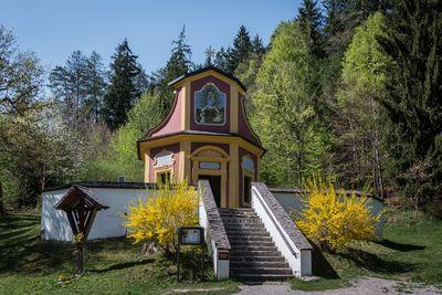 FRIDAY: Umlbergrunde 2