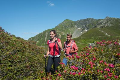 Alpine Pastures Trail on the Kellerjoch 1