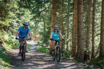 Bike Tour durch den Wald