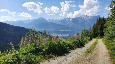 Panorama Route Hüttegg 1